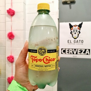 TopoChico is the best. That is all.